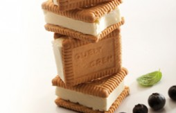 Quelycrem and Cheese Ice Cream Sandwich